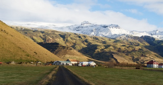 Icelandic beauty