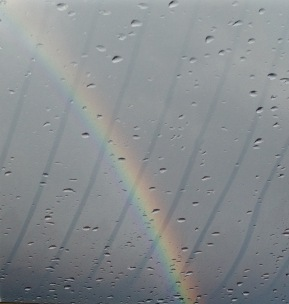 With rain, there is colour (& deck reflections)