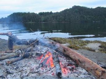 Uninhabited island fire