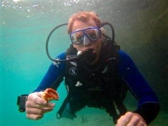 A mini conch find