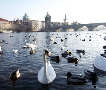 Models of Prague