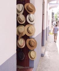 Panama hats in...Panama