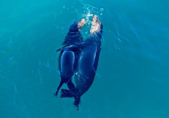 Warm Galapagos welcome
