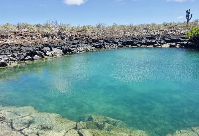 A shark filled lagoon